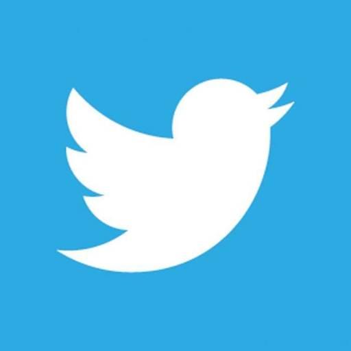 imagen que representa logo de twitter