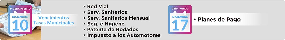 Red Vial, Servicios Sanitarios, Servicios Sanitarios Mensual, Seguridad e Higiene Mensual, Patente de Rodados, Impuesto a los Automotores