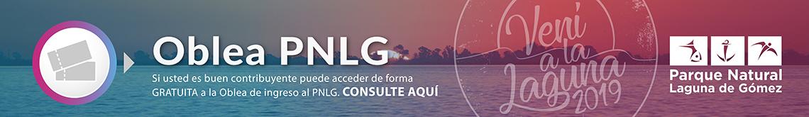 Consulte aquí si usted es buen contribuyente y puede acceder de forma GRATUITA a la Oblea de ingreso al PNLG
