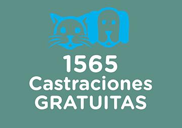 En la imagen se observan un perro y un gato con el texto 1565 Castraciones Gratuitas